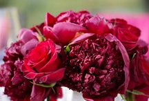 Red Weddings / red, burgundy, wine, wedding flowers, bouquets, centerpiece, reception, ceremony, Sonoma, Napa Winery & Vineyard events & floral designs / by Fleurs De France