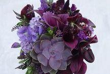 Succulent Weddings / wedding flowers, succulents, bouquets, ceremony, reception, centerpiece, / by Fleurs De France