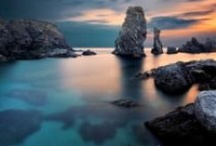 Nature / by Easy Branches