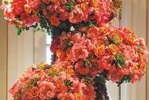 Coral Weddings / by Fleurs De France