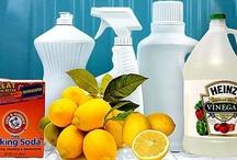 Cleaning Tips / by Stephanie Nover (Stephanie Glovins)
