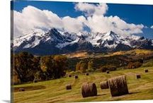 Colorado / Things to see in the breathtaking state that I live in :) / by Kayla Schaft