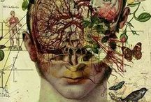 Philosophy / by Shalon van Tine