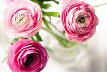 Fresh Flowers / by Amy Havins | Dallas Wardrobe