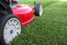 Garden/Yard Care Tips / by Ashley Carroll