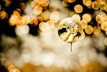 Bokeh / by Julie-Ann Neywick