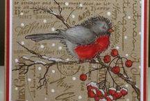 Christmas / Beautiful and fun decorations for Christmas / by Lynda Morgan