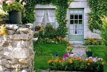 Home & Garden / by Jenny Tart