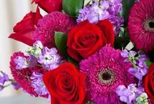 Fresh Flowers / Fresh flowers are one of life's greatest simple pleasures! / by Tammy Gibson