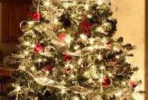 Christmas Trees / There are lots of ideas on how to decorate trees in this board. Enjoy! / by Sharlene Renee