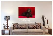 ♥ Memories on Display  / Inspiration and how-to'd for displaying your gorgeoua photographic Wall Art  / by Akemi Photography