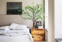 Decor: Bedroom / by hsknyc