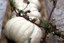 Fall  & Thanksgiving / Decorating ideas / by Shari Valicenti