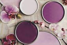 Color Scheme Palettes / by Shanna Nicole Design