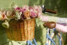 Romantic & Vintage / by Elves Dreams