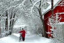 Winter / by Alex Hatch