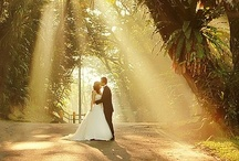 Weddings / Ceremonies / Weddings is our specialty!  We have all of the services you need to make your day special!  Contact us to discuss your dream day!  / by Karolynn McMurray