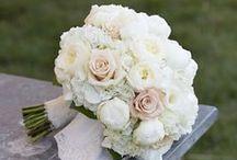 L's wedding dreams / by Lindsay Valentino