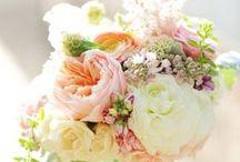 Flowers! / by Hannah McNutt