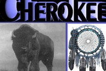 Native American / My roots are in the Cherokee Nation / by Sheila Mercado