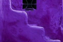 Purple / Purple Haze / by Sheila Mercado