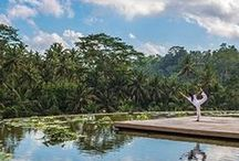 Energy by Four Seasons / In today's plugged-in, fast-paced world, there's one thing we all need: Energy. We've circled the globe to bring you expert solutions. Ready to recharge? Introducing Energy by Four Seasons. / by Four Seasons Hotels and Resorts