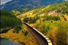 Travel Log / by Snigdha Jha