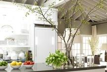 Dream Kitchens / by Pamela Stephens