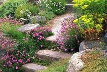 Down The Garden Path2... / by Ar Families
