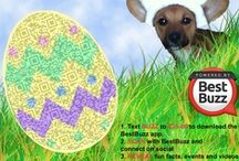 Easter QR code fun! / Welcome to our Easter Board where we will be pinning fun QR codes used at Easter. We will probably also include some cute Easter Bunnies and Chicks too.... / by BestBuzz