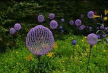 garden ideas / by Tracy Balcius