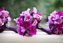 Wedding- purple, gold, white / by Barb Ellis-Danford