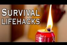 survival preparedness/in case of emergency / by Tracy Balcius