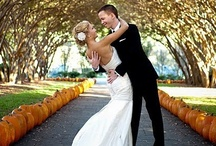 Wedding- fall / by Barb Ellis-Danford