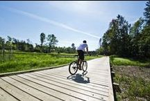 Trails / by Wisconsin Travel Best Bets
