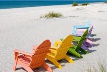 Destination : Sanibel Island, Florida / by Patti Taylor