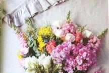 Florals / by Shannon G. LeDuke