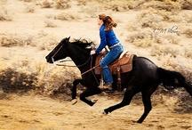 Horses! Horses! / by Sage Bishop