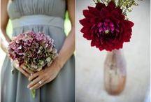 Raspberry, Gray & Dusty Rose Weddings / by Michael C. Fina