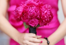 Color: Pink / by WeddingMoons