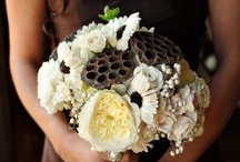 Color: Tan & Brown / by WeddingMoons