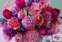 Flower & Plants / by Katie Moles