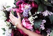 beautiful blooms / by tahnee edweiner