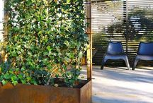 Garden design / by Andreas Wiil