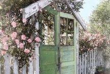 Garden Dreams / by Shawn Shreeves