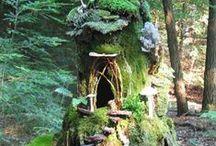 Fairy Garden / by Alice Tomer