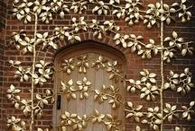 Doors / by Lana Belic