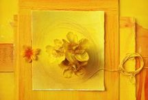Color me: Yellow / by Clarice Larkin