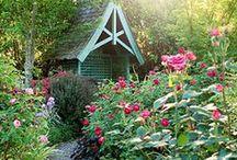 dream gardens / by Robin Bainbridge