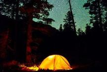 """""""I went to the woods because I wished to live deliberately"""" / Quote from """"Walden Pond""""  - Camping, Backpacking and Day Hikes / by Mandy Crawley"""